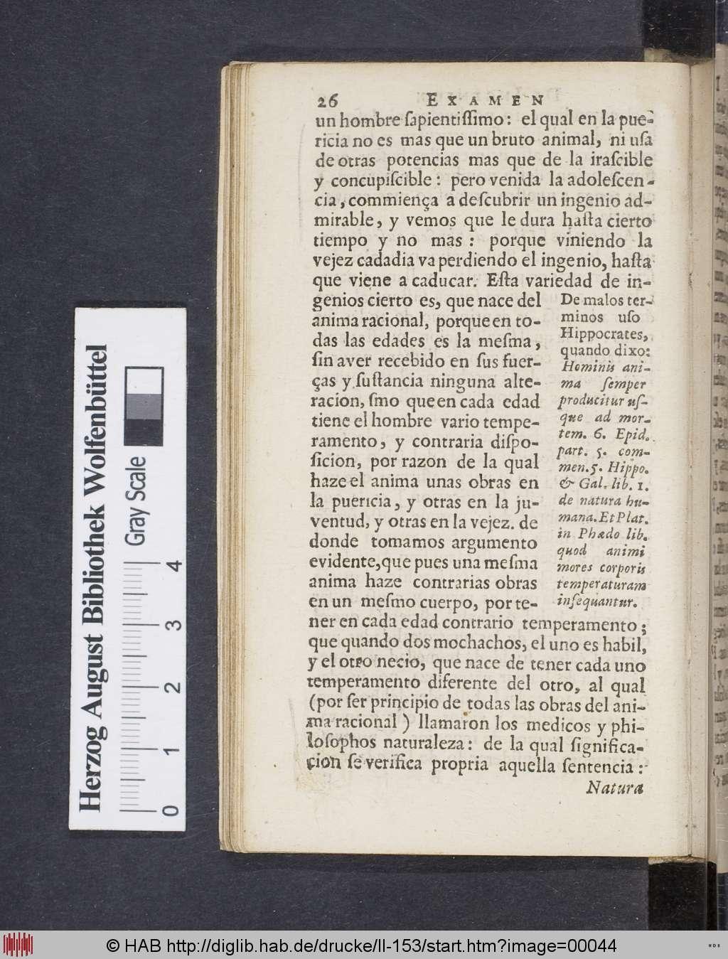 Digitale Edition der Übersetzungen