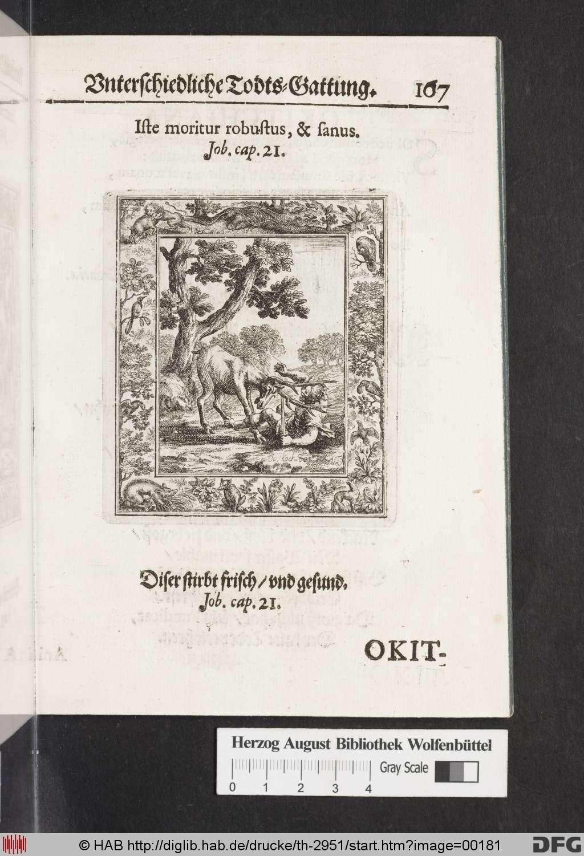 http://diglib.hab.de/drucke/th-2951/00181.jpg