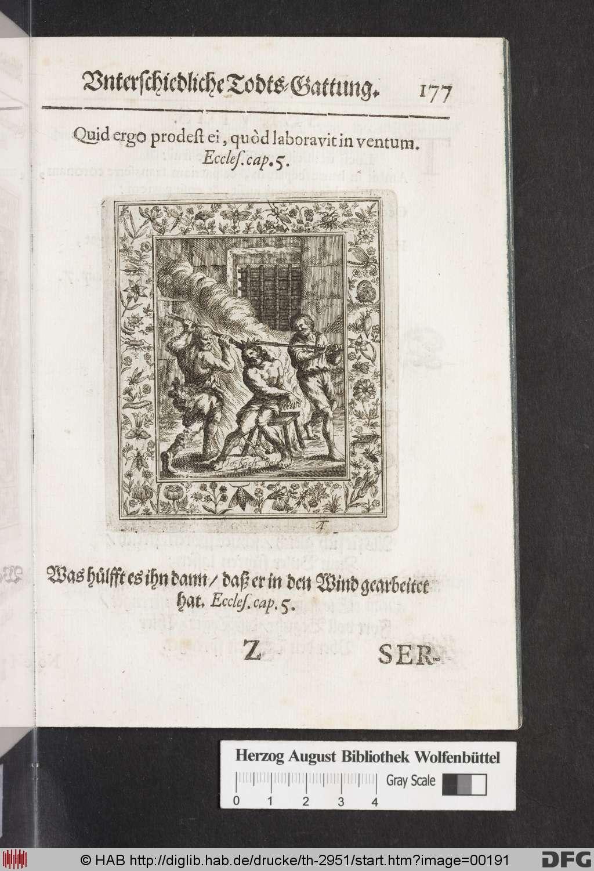 http://diglib.hab.de/drucke/th-2951/00191.jpg