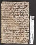 Cod. Guelf. 1023 Novi — Niederdeutsche Gebete — Norddeutschland, 15. Jh.