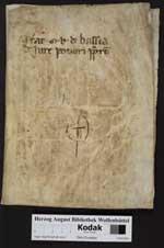 Cod. Guelf. 264.25 Extrav. — Heinrich von Langenstein: Epistula pacis — nach 1379