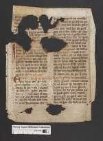 Cod. Guelf. 404.10 Novi (10) — Deutsches Lektionar. Fragmente — 13./15. Jh.