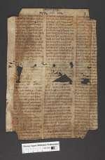 Cod. Guelf. 404.10 Novi (23) — Das alte Passional, Fragment — 13./14. Jh.