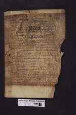 Cod. Guelf. 404.8.2 Novi (15) — Beda Venerabilis: Explanatio Apocalypsis, Fragment — 9. Jh.