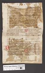 Cod. Guelf. 404.9 Novi (13) — Heinrich von Hesler: Erlrung, Fragment — 14. Jh.