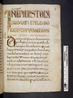 Cod. Guelf. 81 Weiss. — Martyrologium Hieronymianum und Weissenburger Annalen — Weissenburg, VIII. Jh., 2. H.