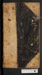 X 176 — Lehnbuch der Familie von Alvensleben — 17./18. Jh.