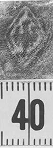 Image Description for http://diglib.hab.de/varia/ebdb/h0000066.jpg