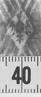 Image Description for http://diglib.hab.de/varia/ebdb/h0000079.jpg