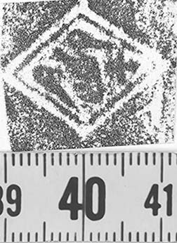 Image Description for http://diglib.hab.de/varia/ebdb/h0000096.jpg