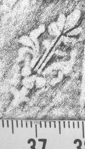 Image Description for http://diglib.hab.de/varia/ebdb/h0000625.jpg
