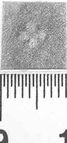 Image Description for http://diglib.hab.de/varia/ebdb/h0000830.jpg