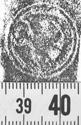 Image Description for http://diglib.hab.de/varia/ebdb/h0001157.jpg