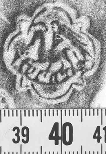 Image Description for http://diglib.hab.de/varia/ebdb/h0001242.jpg