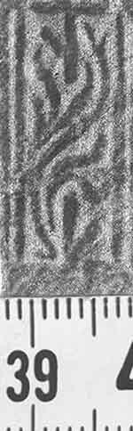 Image Description for http://diglib.hab.de/varia/ebdb/h0001777.jpg