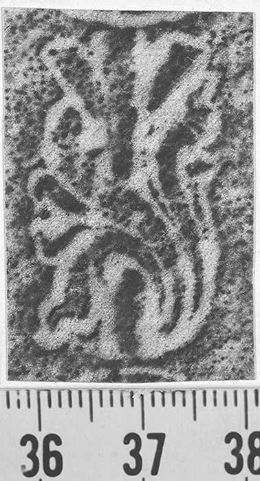 Image Description for http://diglib.hab.de/varia/ebdb/h0001870.jpg