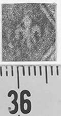 Image Description for http://diglib.hab.de/varia/ebdb/h0001923.jpg