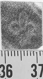 Image Description for http://diglib.hab.de/varia/ebdb/h0001933.jpg