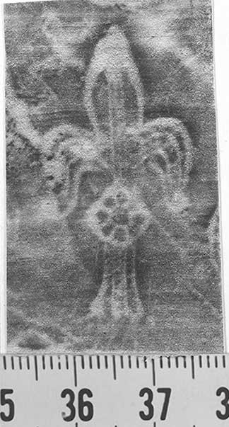 Image Description for http://diglib.hab.de/varia/ebdb/h0001953.jpg