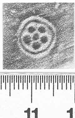 Image Description for http://diglib.hab.de/varia/ebdb/h0002181a.jpg
