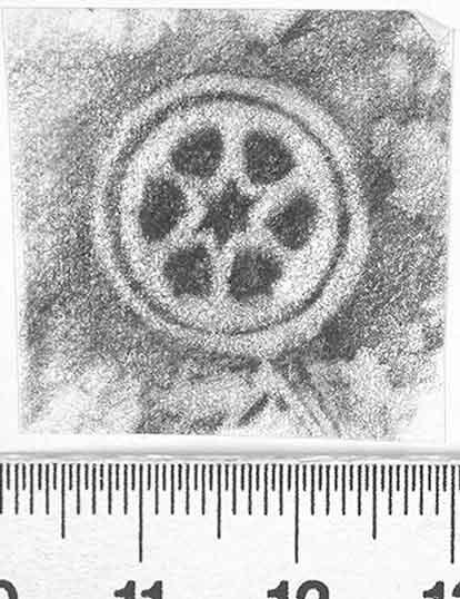 Image Description for http://diglib.hab.de/varia/ebdb/h0002619.jpg