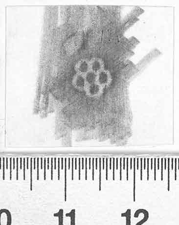 Image Description for http://diglib.hab.de/varia/ebdb/h0002760.jpg