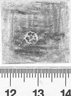 Image Description for http://diglib.hab.de/varia/ebdb/h0002813.jpg