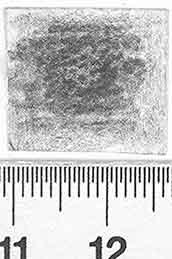 Image Description for http://diglib.hab.de/varia/ebdb/h0002821.jpg