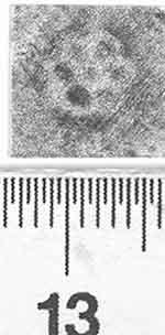 Image Description for http://diglib.hab.de/varia/ebdb/h0002858.jpg
