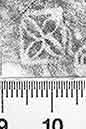 Image Description for http://diglib.hab.de/varia/ebdb/h0003048.jpg