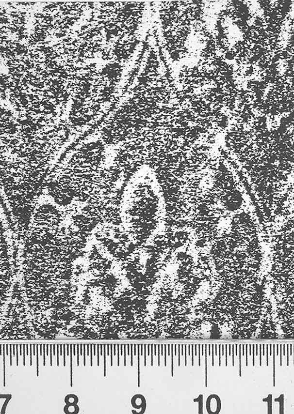 Image Description for http://diglib.hab.de/varia/ebdb/h0004088.jpg