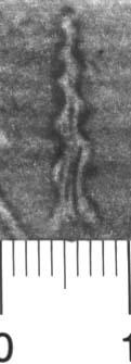 Image Description for http://diglib.hab.de/varia/ebdb/h0004912.jpg
