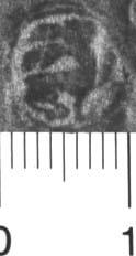 Image Description for http://diglib.hab.de/varia/ebdb/h0004924.jpg