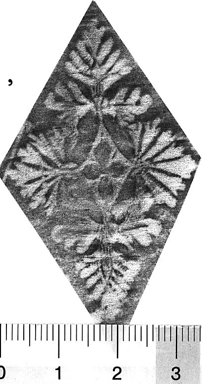 Image Description for http://diglib.hab.de/varia/ebdb/h0005034.jpg