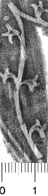 Image Description for http://diglib.hab.de/varia/ebdb/h0005188.jpg