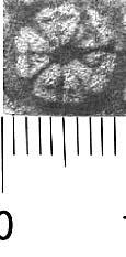 Image Description for http://diglib.hab.de/varia/ebdb/h0005284.jpg