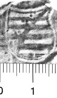 Image Description for http://diglib.hab.de/varia/ebdb/h0005390.jpg
