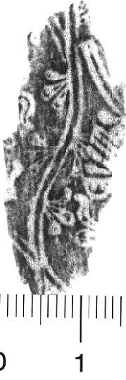 Image Description for http://diglib.hab.de/varia/ebdb/h0005409.jpg