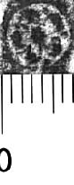 Image Description for http://diglib.hab.de/varia/ebdb/h0005598.jpg