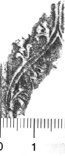 Image Description for http://diglib.hab.de/varia/ebdb/h0005648.jpg