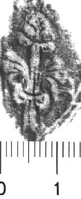 Image Description for http://diglib.hab.de/varia/ebdb/h0005649.jpg