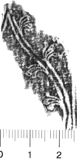 Image Description for http://diglib.hab.de/varia/ebdb/h0005787.jpg