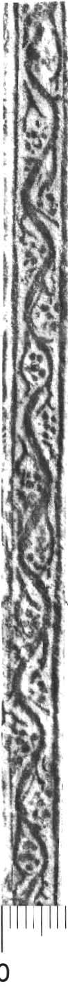 Image Description for http://diglib.hab.de/varia/ebdb/h0005798.jpg