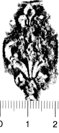 Image Description for http://diglib.hab.de/varia/ebdb/h0005894.jpg