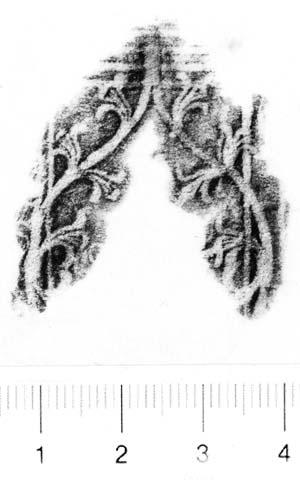 Image Description for http://diglib.hab.de/varia/ebdb/h0005992.jpg