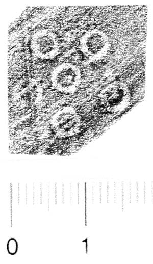 Image Description for http://diglib.hab.de/varia/ebdb/h0006231.jpg