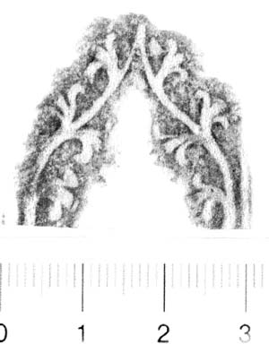 Image Description for http://diglib.hab.de/varia/ebdb/h0006248.jpg