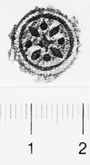 Image Description for http://diglib.hab.de/varia/ebdb/h0006419.jpg