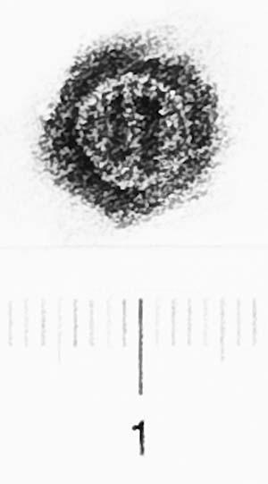 Image Description for http://diglib.hab.de/varia/ebdb/h0006424.jpg