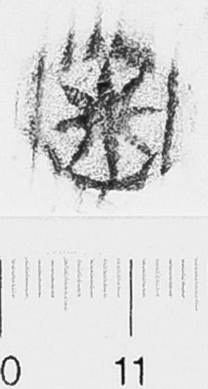 Image Description for http://diglib.hab.de/varia/ebdb/h0006526.jpg